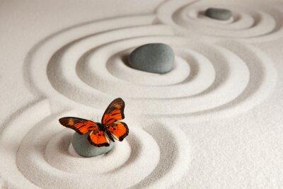 Vinilo Rocas del zen con la mariposa