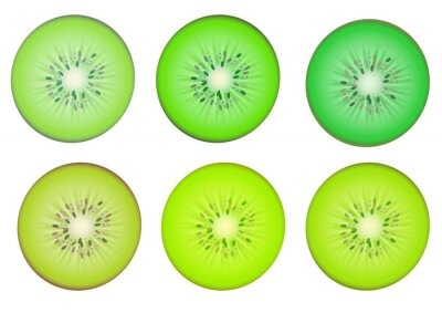 Vinilo Rodajas de fruta kiwi en color múltiple sombra verde
