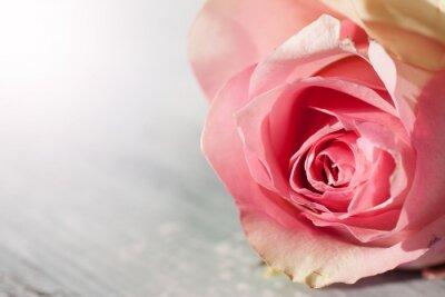 Vinilo Rosas Naturaleza muerta