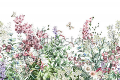 Vinilo seamless rim. Border with Herbs and wild flowers, leaves. Botanical Illustration Colorful illustration on white background. Spring composition with butterfly