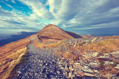 Vinilo sendero de montaña