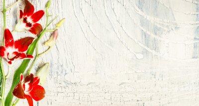 Vinilo Shabby chic fondo con flores de orquídeas rojas, vista superior, lugar de texto.