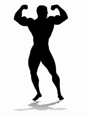 Vinilo Silueta de bodybuilder, dibujo vectorial