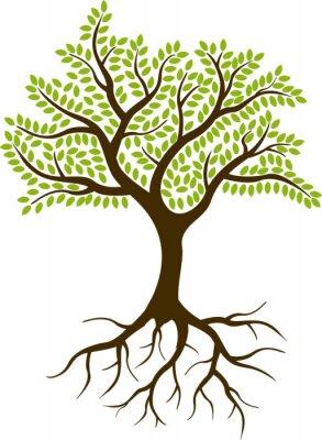 Vinilo silueta del árbol