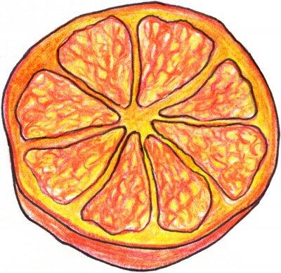 Vinilo Sketch mano rodaja de naranja elaborado aislado