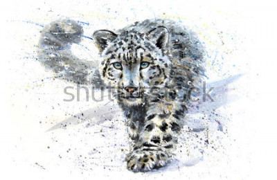 Vinilo Snow leopard animals watercolor predator wildlife