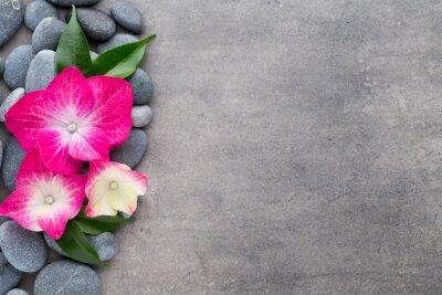 Vinilo Spa piedras y flores, sobre fondo gris.