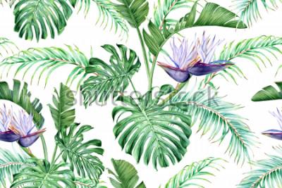 Vinilo Strelitzia blanca y hojas tropicales. Una rara flor exótica. Acuarela de patrones sin fisuras.