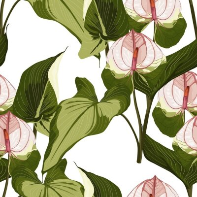Vinilo Summer colorful hawaiian seamless pattern with tropical plants and Spathiphyllum flowers on white background.