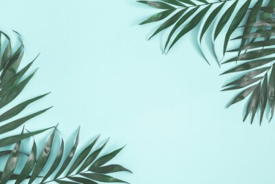 Vinilo Summer composition. Palm leaves on pastel blue background. Summer concept. Flat lay, top view, copy space