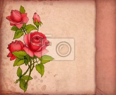 Tarjeta De Felicitación Color De Rosa Con El Dibujo De La Rosa