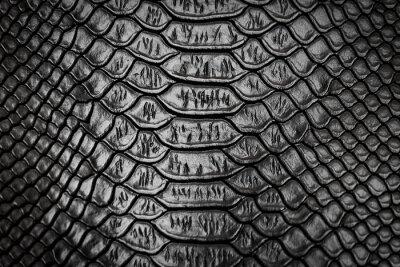 Vinilo Textura de patrón de piel de serpiente negra