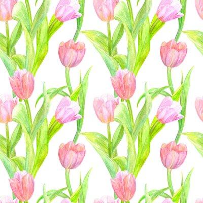 Vinilo Textura transparente con tulipanes elegantes para su diseño. pintura de acuarela
