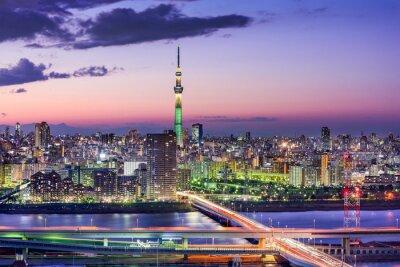 Vinilo Tokio, Japón Skyline