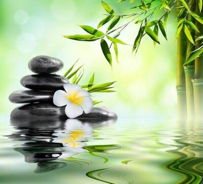 Vinilo tratamiento de masaje spa en el jardín con frangipani y bambú