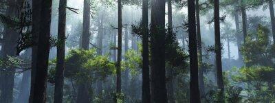 Vinilo Trees in the fog. The smoke in the forest in the morning. A misty morning among the trees. 3D rendering