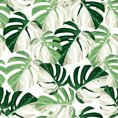 Vinilo Tropic summer painting seamless pattern with exotic monstera leaves.