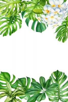 Vinilo tropical leaves and flowers on an isolated background, greeting cards with space for text, watercolor painting, botanical illustration, floral design, plumeria, palms, monstera
