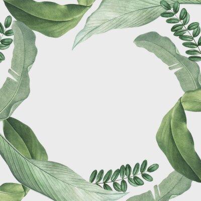 Vinilo Tropical leaves frame