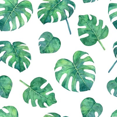 Vinilo Tropical  seamless pattern with monstera leaves. Hand painted in watercolor.