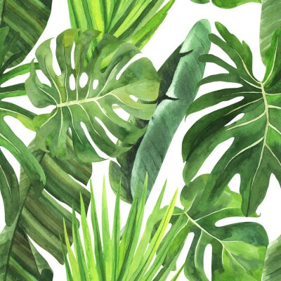 Vinilo  Tropical seamless pattern with tropical leaves, palm banana monstera on an isolated white background, watercolor jungle drawing, stock illustration.