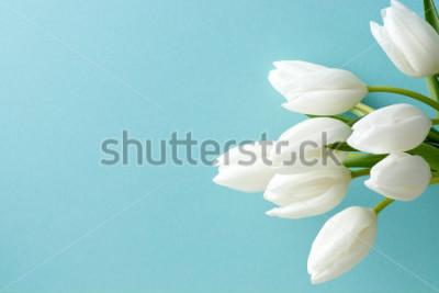 Vinilo tulipán blanco