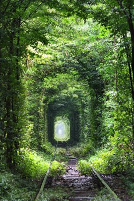 Vinilo Túnel del amor