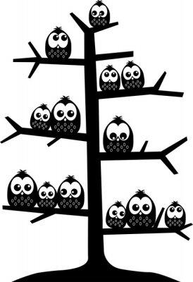Vinilo Un árbol lleno de búhos
