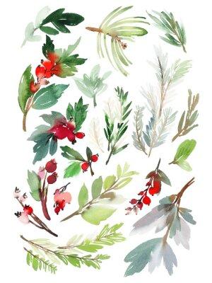 Vinilo Un conjunto de elementos florales de Navidad sobre un fondo blanco
