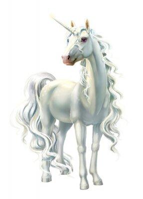 Vinilo unicorn, full-length isolated on white
