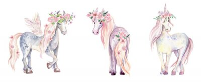 Vinilo Unicornio Mágico, Pegaso y Pony. Ilustración acuarela, beauti