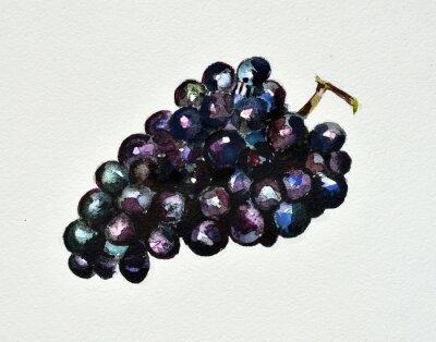Vinilo uvas acuarela