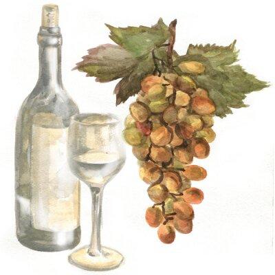 Vinilo Uvas, botella de vino, vino blanco en una copa de vino de vidrio. Pintura de acuarela
