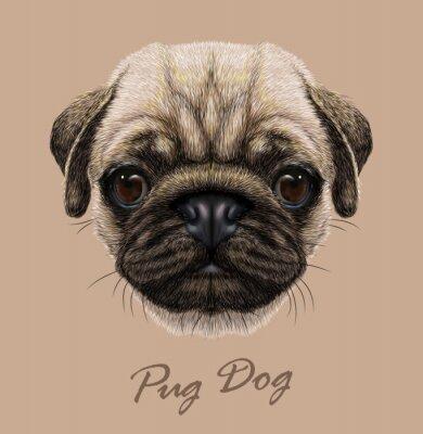 Vinilo Vector Ilustrativo Retrato de perro Pug.