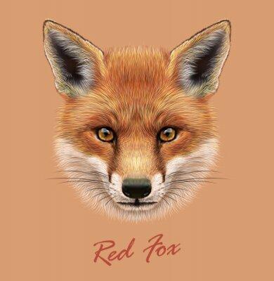 Vinilo Vector Ilustrativo Retrato de un zorro rojo