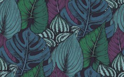 Vinilo Vector patrón transparente con composiciones de plantas tropicales dibujadas a mano