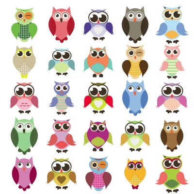 Vinilo vector set of owls