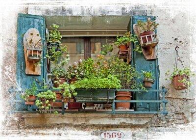 Vinilo Venecia, viejas ventanas pequeñas con plantas