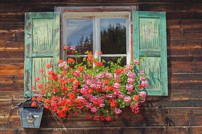 Vinilo viejas ventanas de madera con Planter