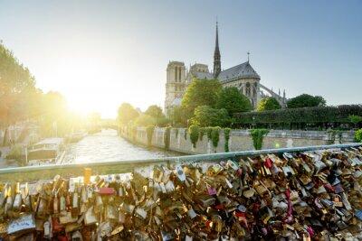 Vinilo Vista de la catedral de Notre Dame en París con las cerraduras famosas del amor