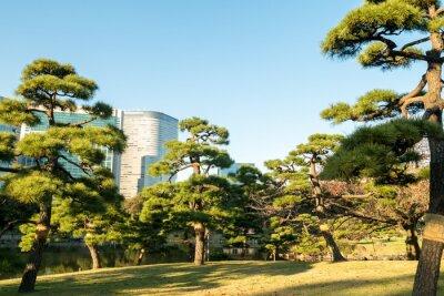 Vinilo Vista del paisaje urbano de tokio con el parque