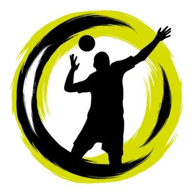 Vinilo Voleibol - 101