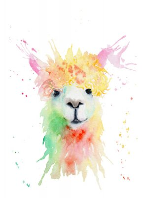 Vinilo watercolor drawing of an animal - alpaca, drops, splashes