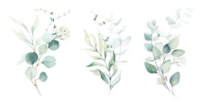 Vinilo Watercolor floral illustration set - green leaf branches collection, for wedding stationary, greetings, wallpapers, fashion, background. Eucalyptus, olive, green leaves, etc.