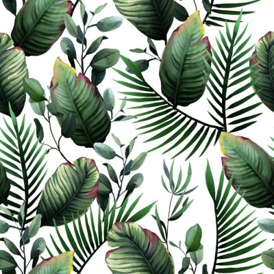Vinilo Watercolor seamless pattern of tropical green leaves and palm on white