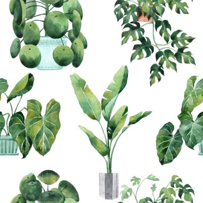 Vinilo Watercolor seamless pattern with tropical leaves and houseplants leaves. Greenery. Succulent. Floral Design element. Perfect for invitations, cards, prints, posters