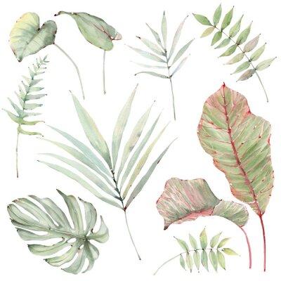 Vinilo watercolor tropical plants set.