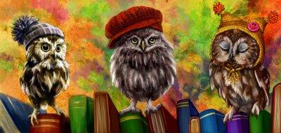 Vinilo Совы и книги