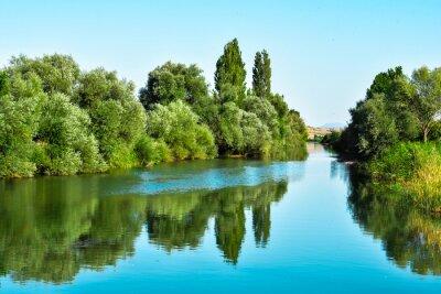 Vinilo Nehir sulari ve ağaçların yansıması