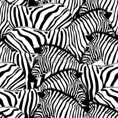 Vinilo Zebra seamless pattern.Savannah Animal ornament. Wild animal texture. Striped black and white. design trendy fabric texture, illustration.